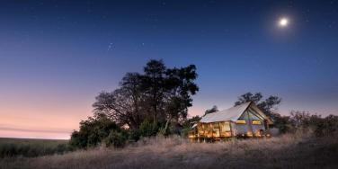 Sleep under a blanket of stars (African Bushcamps)