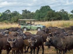 Wilderness Safaris operates sustainable lodges in Zimbabwe